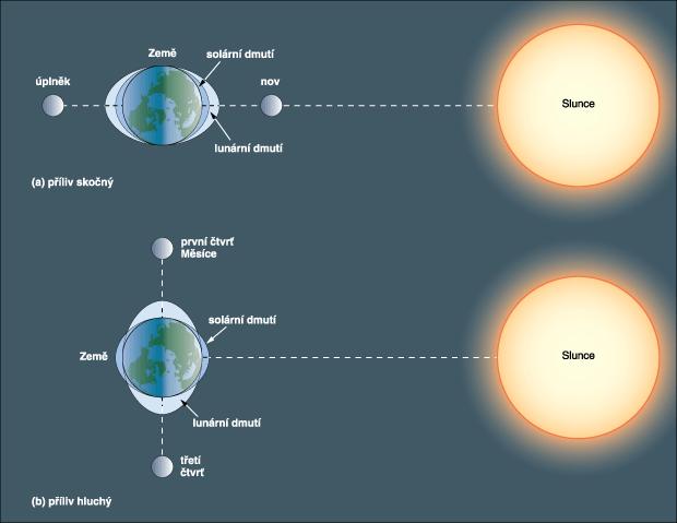 Souvislost uspořádání těles v soustavě Země – Slunce – Měsíc a slapových jevů